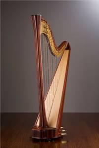 Salvi | Harp Chamber
